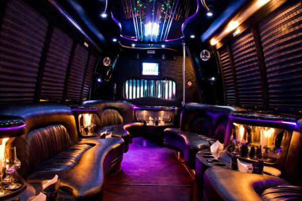 15 Person Party Bus Rental Edison